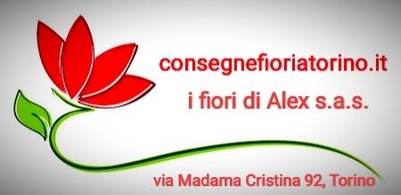 I fiori di Alex sas di Alessandro Garzotto & C.